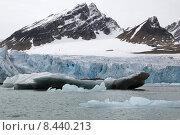 Купить «glacier arctic svalbard spitzbergen einsamkeit», фото № 8440213, снято 18 ноября 2018 г. (c) PantherMedia / Фотобанк Лори