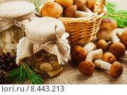 Купить «Консервированные грибы в стеклянных банках, домашние заготовки», фото № 8443213, снято 28 июля 2015 г. (c) Надежда Мишкова / Фотобанк Лори