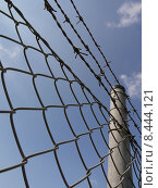 Купить «captivity neighbours neighbourhood barbed wire», фото № 8444121, снято 23 марта 2019 г. (c) PantherMedia / Фотобанк Лори