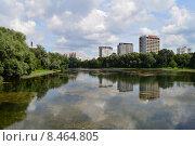 Купить «Пруд Садки. Москва», эксклюзивное фото № 8464805, снято 29 июля 2015 г. (c) lana1501 / Фотобанк Лори
