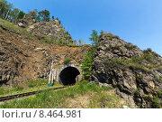Лето на Кругобайкальской железной дороге к югу от озера Байкал (2015 год). Стоковое фото, фотограф Борис Ветшев / Фотобанк Лори