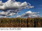 Купить «Wind turbine and corn field», фото № 8473081, снято 20 сентября 2012 г. (c) Caro Photoagency / Фотобанк Лори