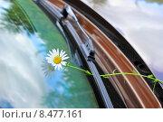 Купить «Цветок на стекле автомобиля», эксклюзивное фото № 8477161, снято 2 августа 2015 г. (c) Юрий Морозов / Фотобанк Лори