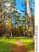 Осенний парк. Тойла, Эстония (2009 год). Стоковое фото, фотограф Andrei Nekrassov / Фотобанк Лори