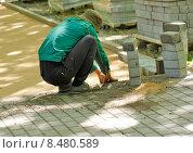 Укладка тротуарной плитки. Стоковое фото, фотограф Татьяна Кучинская / Фотобанк Лори