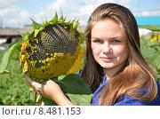 Купить «Молодая девушка с подсолнухом», эксклюзивное фото № 8481153, снято 5 августа 2015 г. (c) Ольга Линевская / Фотобанк Лори