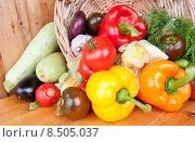 Свежие овощи в корзине: перец, помидоры, лук, чеснок, кукуруза, огурец, баклажан. Стоковое фото, фотограф E. O. / Фотобанк Лори