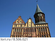 Купить «cathedral russian russia kaliningrad nigsberg», фото № 8506021, снято 25 мая 2019 г. (c) PantherMedia / Фотобанк Лори