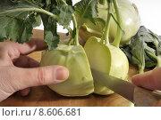 Купить «cut vegetable cooking vegetarian prepare», фото № 8606681, снято 20 января 2019 г. (c) PantherMedia / Фотобанк Лори