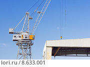 Купить «Crane», фото № 8633001, снято 17 июня 2019 г. (c) PantherMedia / Фотобанк Лори
