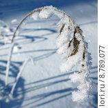 Купить «water snow mountains freeze bavaria», фото № 8789077, снято 23 марта 2019 г. (c) PantherMedia / Фотобанк Лори