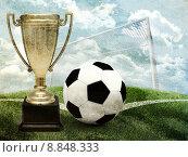 Купить «Футбольный кубок и ворота», иллюстрация № 8848333 (c) Кирилл Черезов / Фотобанк Лори