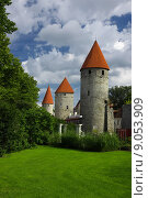 Купить «Medieval towers», фото № 9053909, снято 20 июня 2019 г. (c) PantherMedia / Фотобанк Лори