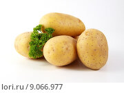 Купить «food potato parsley potatoes aliment», фото № 9066977, снято 16 июня 2019 г. (c) PantherMedia / Фотобанк Лори