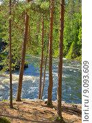 Купить «Деревья освещенные солнцем на фоне бурной реки», фото № 9093609, снято 6 июля 2015 г. (c) Валерия Попова / Фотобанк Лори