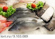 Купить «Fresh fish», фото № 9103089, снято 19 января 2019 г. (c) PantherMedia / Фотобанк Лори