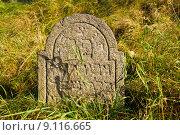 Купить «detail of tomb on forgotten and unkempt Jewish cemetery with the strangers», фото № 9116665, снято 23 июля 2019 г. (c) PantherMedia / Фотобанк Лори