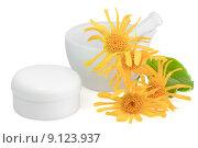 Купить «cream mortar arnica ointment bergwohlverleih», фото № 9123937, снято 26 июня 2019 г. (c) PantherMedia / Фотобанк Лори