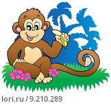 Купить «Monkey eating banana near palms», иллюстрация № 9210289 (c) PantherMedia / Фотобанк Лори