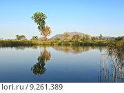 Купить «lake with clear water and trees», фото № 9261389, снято 19 декабря 2018 г. (c) PantherMedia / Фотобанк Лори
