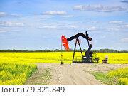 Купить «Nodding oil pump in prairies», фото № 9321849, снято 16 января 2019 г. (c) PantherMedia / Фотобанк Лори