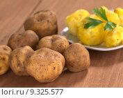 Купить «Peruvian Yellow Potato», фото № 9325577, снято 16 июня 2019 г. (c) PantherMedia / Фотобанк Лори