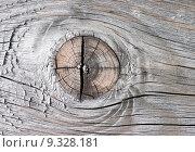Купить «close up old macro wood», фото № 9328181, снято 19 марта 2019 г. (c) PantherMedia / Фотобанк Лори