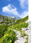 Купить «Great Cold Valley, Vysoke Tatry (High Tatras), Slovakia», фото № 9339729, снято 20 июня 2019 г. (c) PantherMedia / Фотобанк Лори