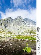Купить «Five Spis Tarns, High Tatras (Vysoke Tatry), Slovakia», фото № 9414709, снято 19 июня 2019 г. (c) PantherMedia / Фотобанк Лори