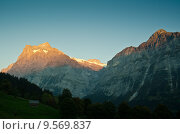 Купить «alps switzerland alpenpanorama gutzgletscher scheideggwetterhorn», фото № 9569837, снято 10 декабря 2018 г. (c) PantherMedia / Фотобанк Лори