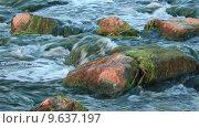 Камни в реке. Стоковое видео, видеограф Антон Глущенко / Фотобанк Лори