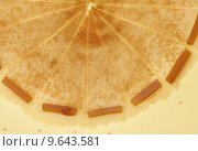 Купить «Раскатанное тесто, посыпанное сахаром и корицей, с кусочками мармелада», эксклюзивное фото № 9643581, снято 11 июня 2015 г. (c) Dmitry29 / Фотобанк Лори
