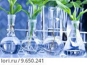 Купить «Floral science in  laboratory », фото № 9650241, снято 18 февраля 2019 г. (c) PantherMedia / Фотобанк Лори