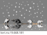 Купить «winter cold snow ice rats», фото № 9668181, снято 27 марта 2019 г. (c) PantherMedia / Фотобанк Лори