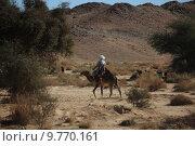 Купить «africa sahara berber algeria bedouin», фото № 9770161, снято 26 мая 2019 г. (c) PantherMedia / Фотобанк Лори