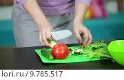 Приготовление салата из огурцов. помидоров и салатных листьев на пластиковой разделочной доске. Стоковое видео, видеограф Кекяляйнен Андрей / Фотобанк Лори