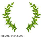Купить «Wreath from Green leaves», фото № 9842297, снято 23 февраля 2019 г. (c) PantherMedia / Фотобанк Лори