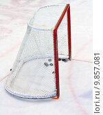 Купить «ice hockey net », фото № 9857081, снято 27 марта 2019 г. (c) PantherMedia / Фотобанк Лори