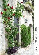 Купить «Red roses», фото № 9943309, снято 23 июля 2019 г. (c) PantherMedia / Фотобанк Лори