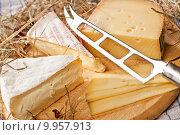 nutrition snack gourmet cheese still. Стоковое фото, фотограф Andreas Poschmann / PantherMedia / Фотобанк Лори