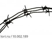 Купить «Image of iron barbwire with twisted thorny elements over white background», фото № 10002189, снято 23 марта 2019 г. (c) PantherMedia / Фотобанк Лори