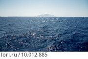 Красное море у берегов Египта. Стоковое фото, фотограф Несветаев Евгений / Фотобанк Лори