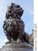 Купить «Bobby Statue Edinburgh», фото № 10036221, снято 18 октября 2018 г. (c) PantherMedia / Фотобанк Лори