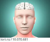 Купить «Brain man», фото № 10070681, снято 21 апреля 2019 г. (c) PantherMedia / Фотобанк Лори