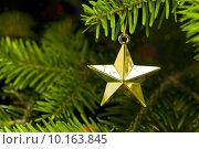 Купить «Star shape Christmas tree decoration», фото № 10163845, снято 23 февраля 2019 г. (c) PantherMedia / Фотобанк Лори