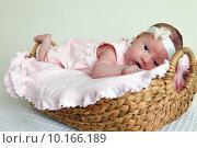 Купить «Новорожденная девочка в корзинке», фото № 10166189, снято 24 октября 2013 г. (c) Морозова Татьяна / Фотобанк Лори