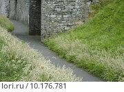 Купить «Path Through the Castle Grounds», фото № 10176781, снято 21 мая 2019 г. (c) PantherMedia / Фотобанк Лори