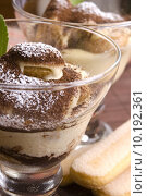 Купить «Tiramisu Dessert », фото № 10192361, снято 18 июня 2019 г. (c) PantherMedia / Фотобанк Лори