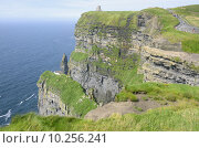 Купить «Cliffs of Moher (Ireland)», фото № 10256241, снято 21 февраля 2020 г. (c) PantherMedia / Фотобанк Лори