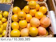 Купить «ripe grapefruits at food market», фото № 10300385, снято 20 декабря 2014 г. (c) Syda Productions / Фотобанк Лори